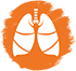 Lung icon: white lungs against orange background